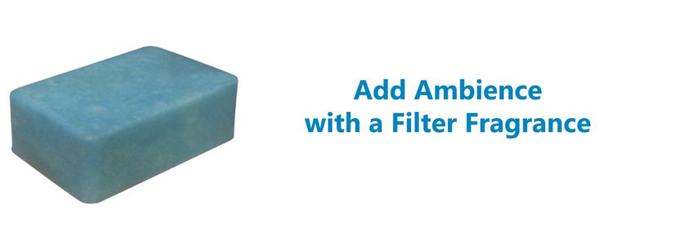 fragrance filter executive